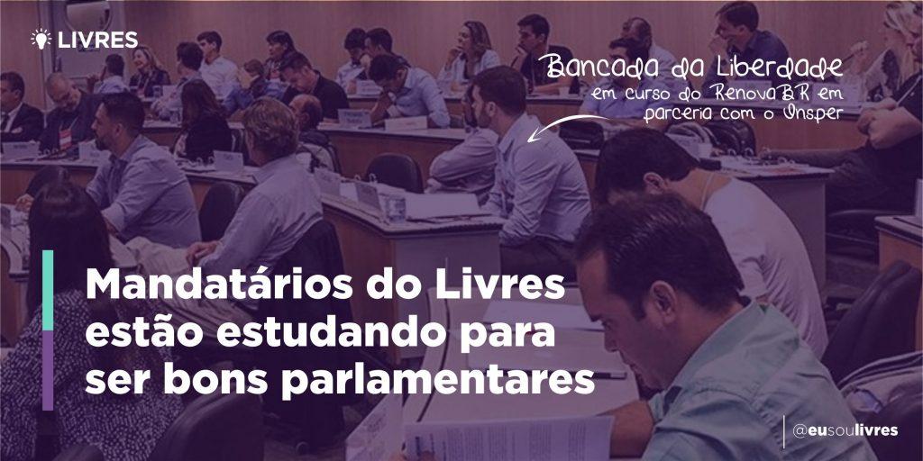 Bancada da Liberdade fez curso do RenovaBR para novos parlamentares