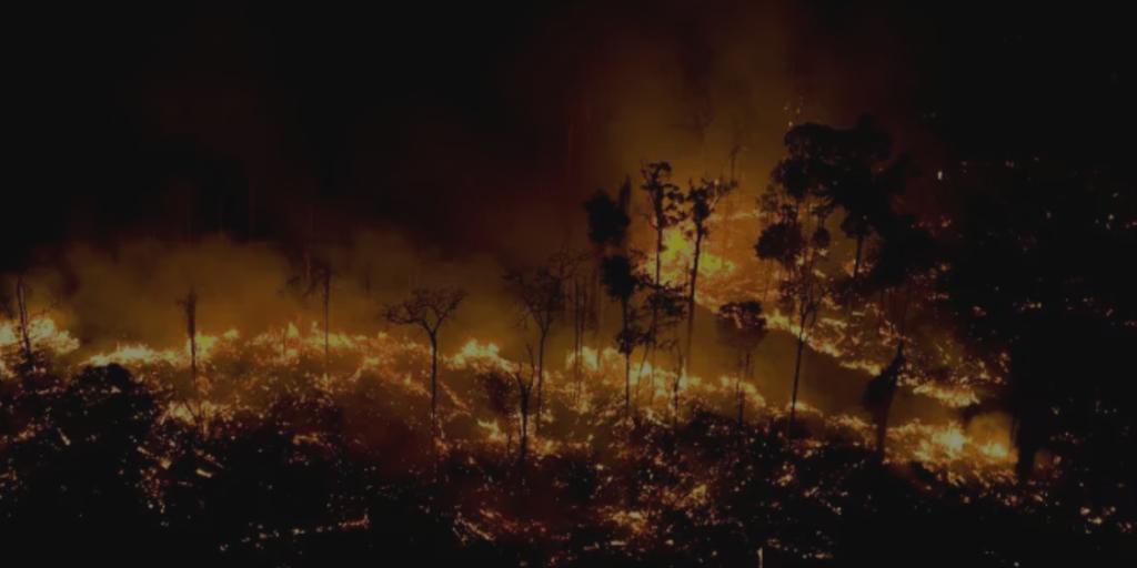 Em 34 anos, desmatamento consumiu espaço equivalente ao Mato Grosso