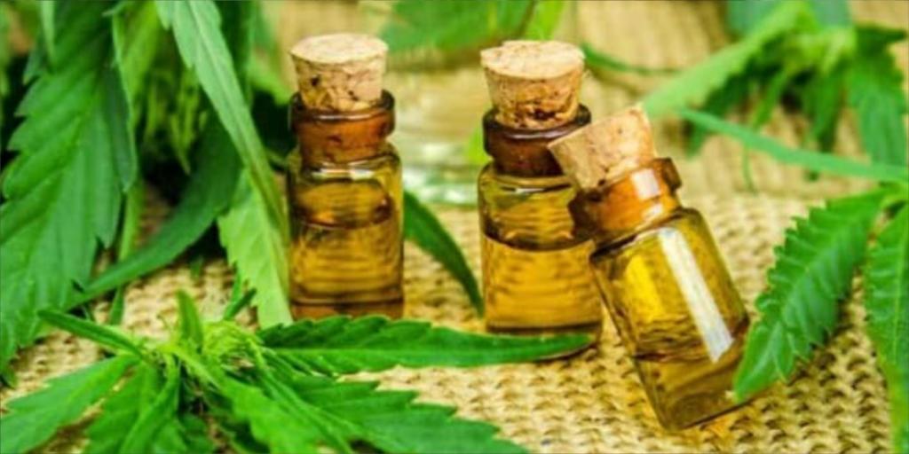 Comissão vai analisar remédios a base de Cannabis