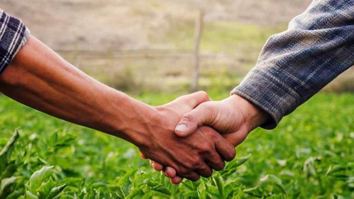 Livres lança nova setorial de agronegócio